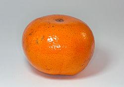 250px-Tangerine_2009-03-11