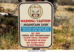 wildlife-sign-warning-in-morongo-valley-bb80nr